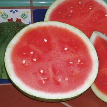 Triple Treat Hybrid Watermelon Seeds