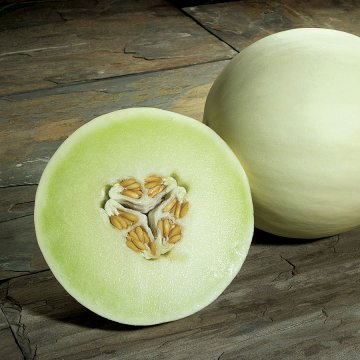 Snow Mass Honeydew Melon Seeds