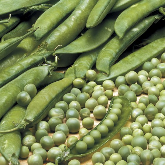 Lincoln Pea Seeds [WS-16275]