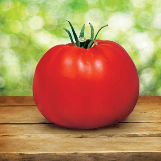 Park's Whopper CR Improved Tomato Seeds [WS-16427]