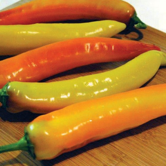 Hot Sunset Hybrid Pepper Seeds