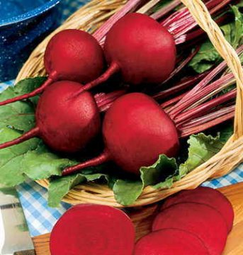 Red Cloud Hybrid Beet Seeds