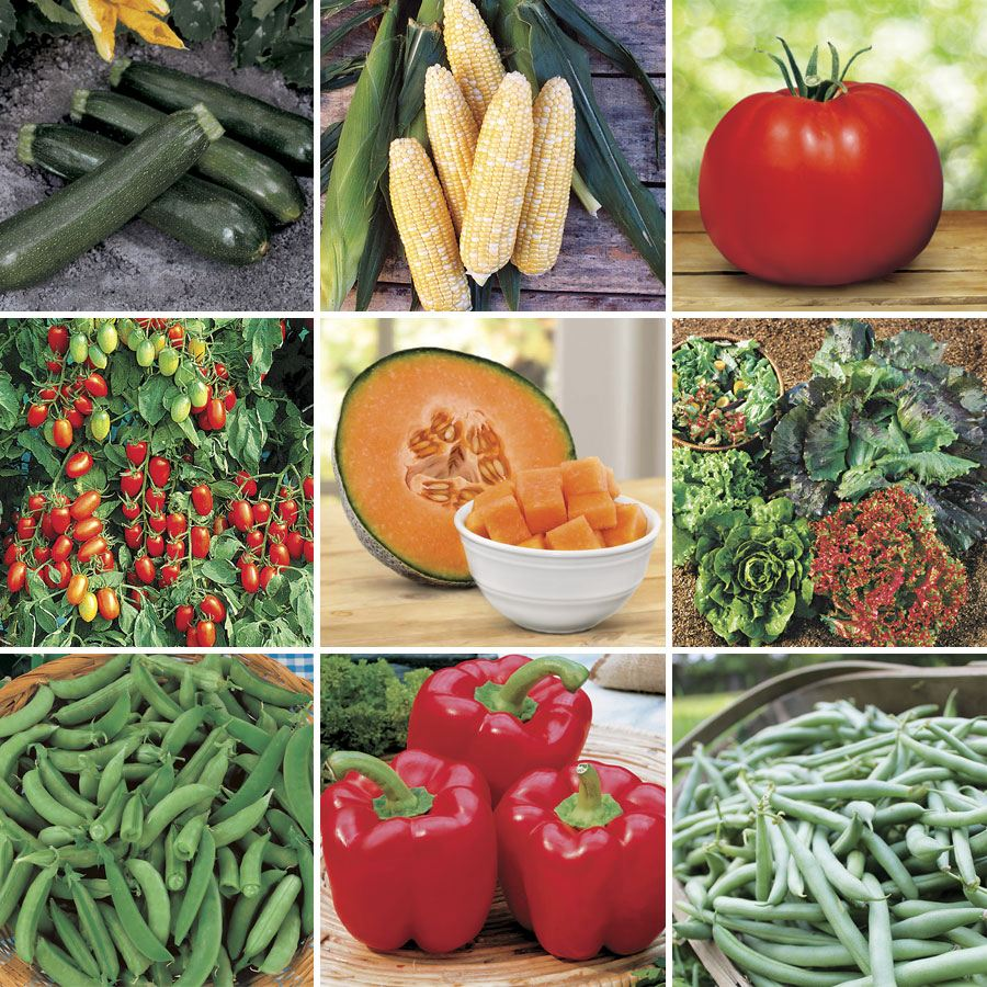 Customer Favorites Vegetable Seed Collection