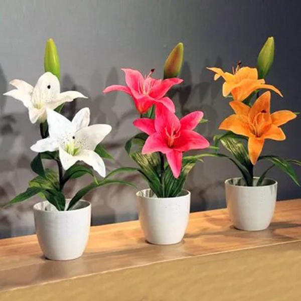 100pcs/pack white red lily flower seeds home garden potted plants bonsai seeds